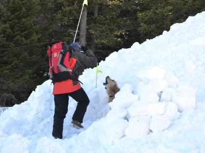 Учебно-тренировъчен курс за водачи на спасителни кучета