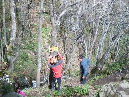 Съвместна работа на ПСС към БЧК и Дирекцията на Природен парк Витоша