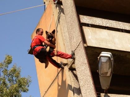 Тренировъчен курс за водачи и спасителни кучета