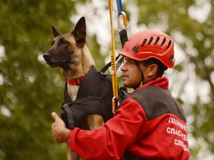 Обучение на водачи и спасителни кучета